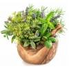 Пряные травы (4)