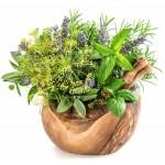 Заказать пряные травы по выгодной цене на сайте