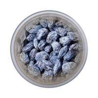 Барбарис синий
