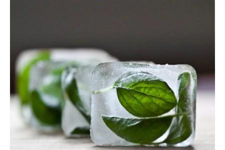 Ледовые кубики с базиликом