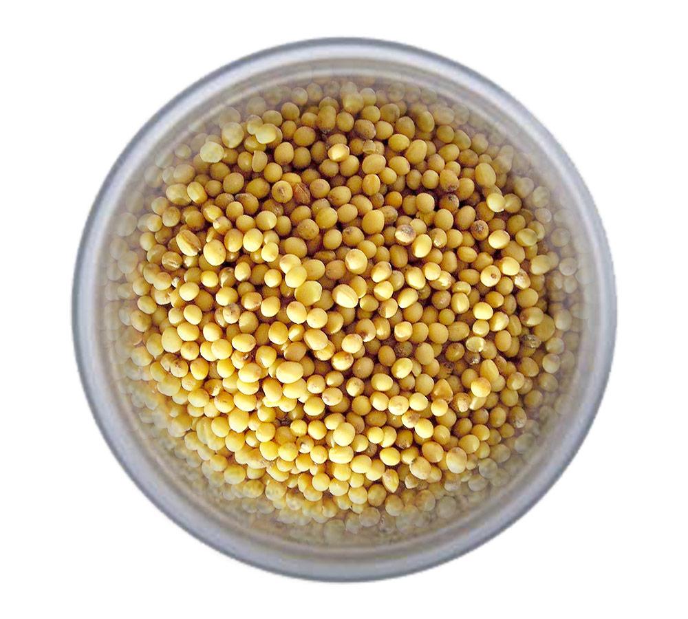 Заказать Горчицу семена желтую по выгодной цене