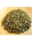 Заказать сушеную зелень мяты в интернет-магазине по выгодной цене