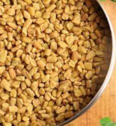 Семена фенугрека (пажитника) высушенные в тарелке для кулинарных блюд