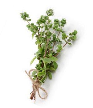 Сушеная зелень майорана - специя, которую можно купить на сайте Приправки