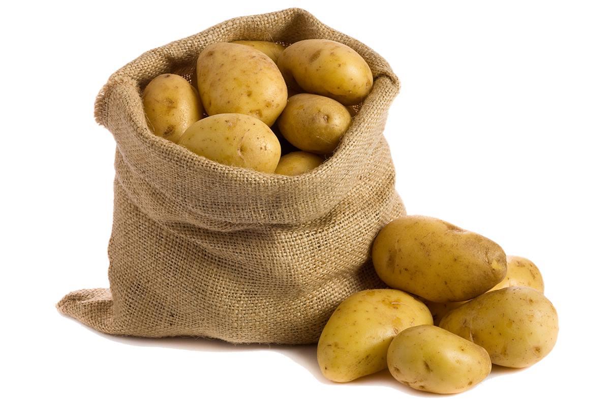 картофель для картошки фри в мешке